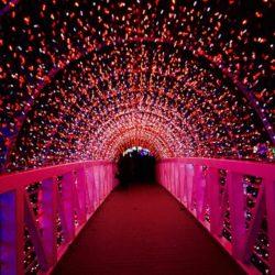 salud visual luces de navidad